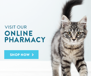 east bend vet online pharmacy